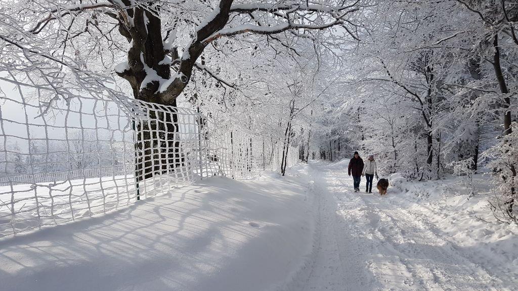 Prawdziwa Zima W Beskidach