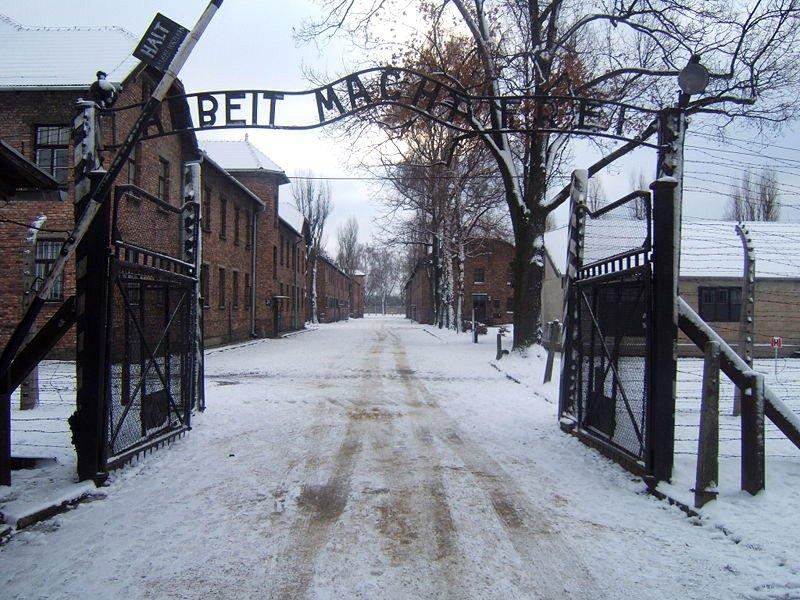 69. Rocznica Wyzwolenia Auschwitz – Birkenau