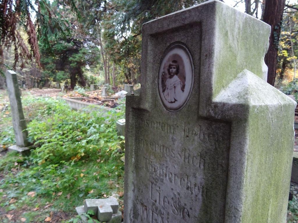 Stary cmentarz ewangelicki- FOTO