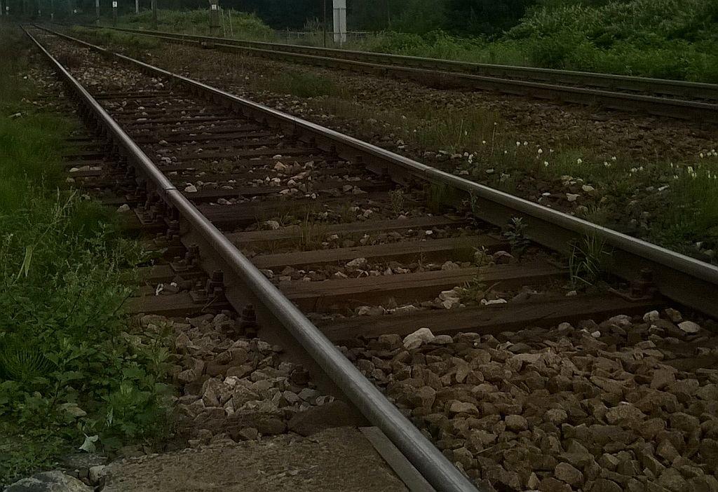 Opóźnienia Pociągów. Na Torach Leżało Ciało