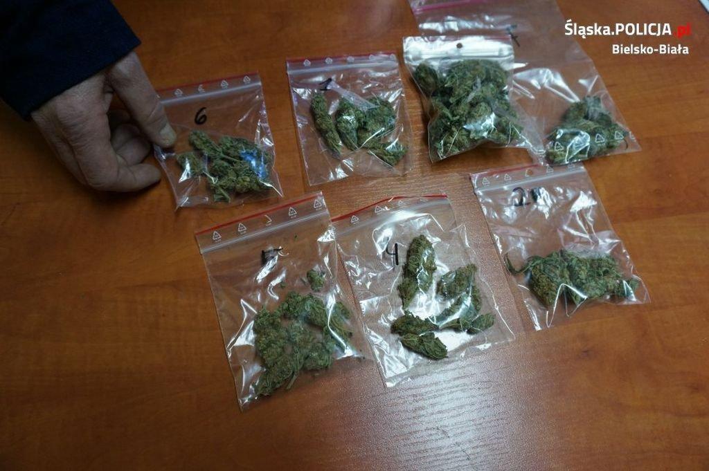 W Samochodzie Miał 100 Porcji Marihuany