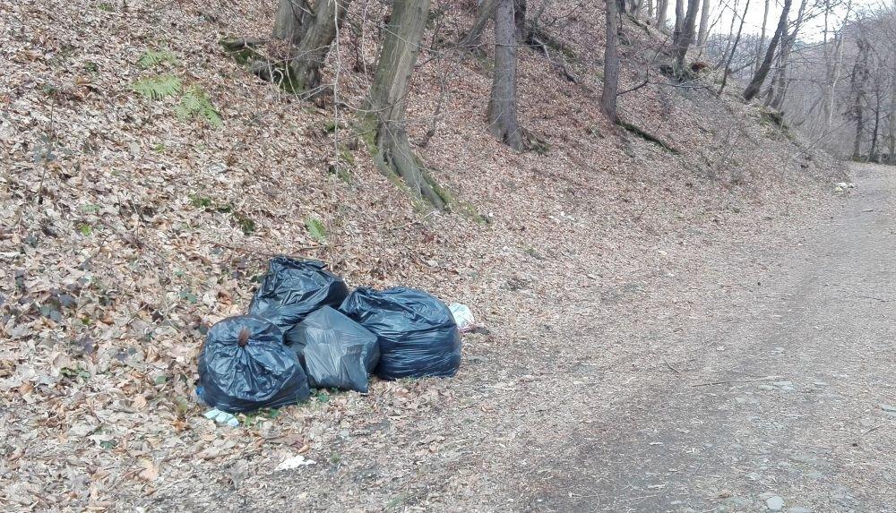 Problem Odpadów. Spalanie Rdf Go Rozwiąże?