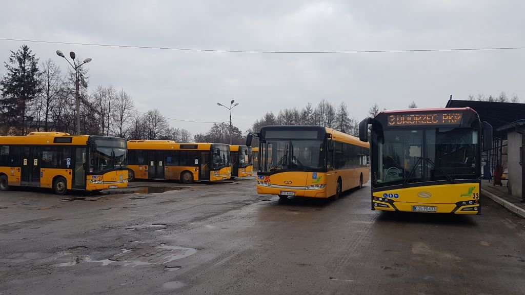 Autobusy Jeżdżą W Kratkę. Kierowcy Chorują...