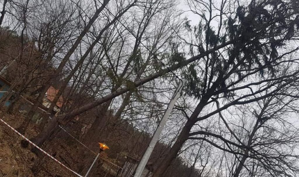 Powiatowy wiatrołom wciąż stoi