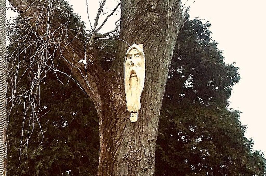 Uwaga na leśne duchy!
