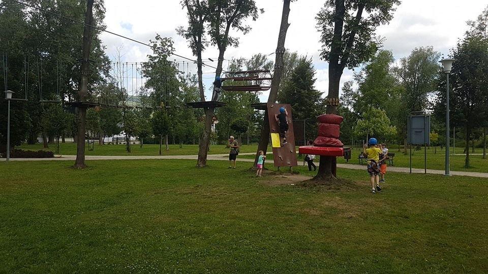 Dewastacja W Parku Linowym