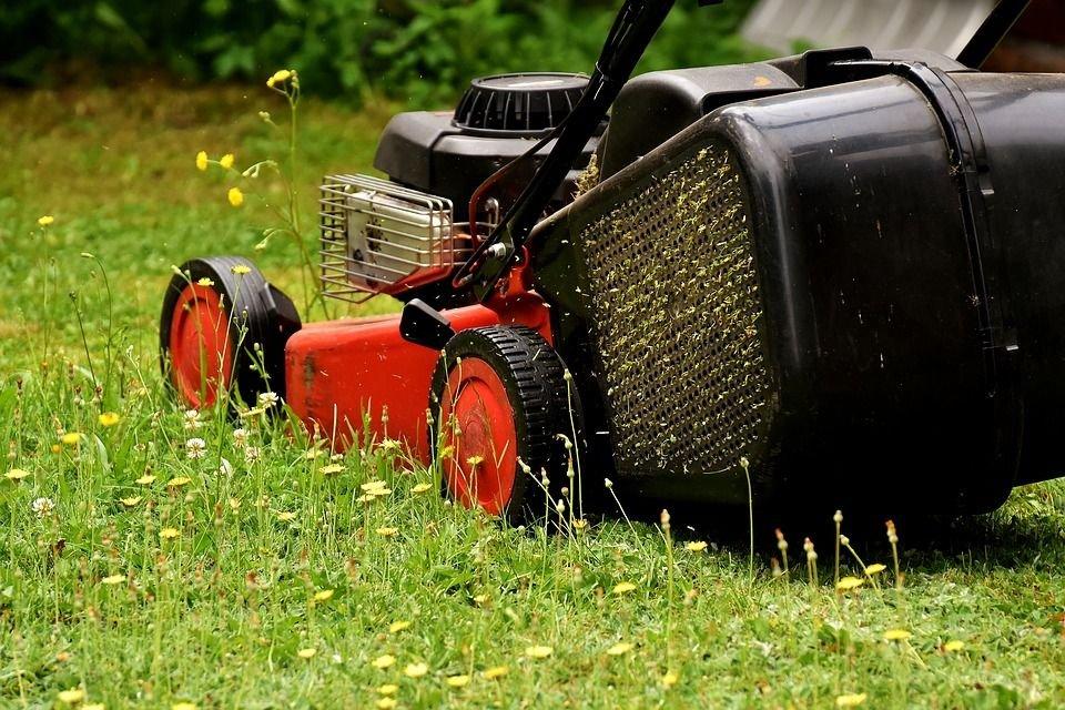 Wójt Skosi Twój Ogród! W Szczytnym Celu