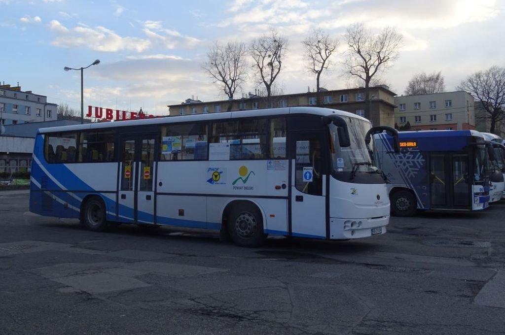Autobus Na Telefon - Sprawdza Się?