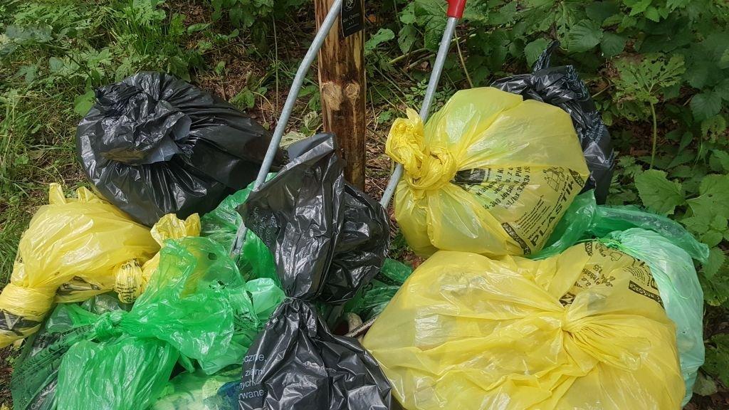 Śmieci zamiast kwietnych łąk