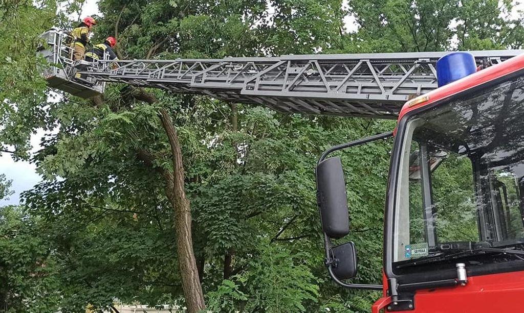 Prawie 170 interwencji strażaków!