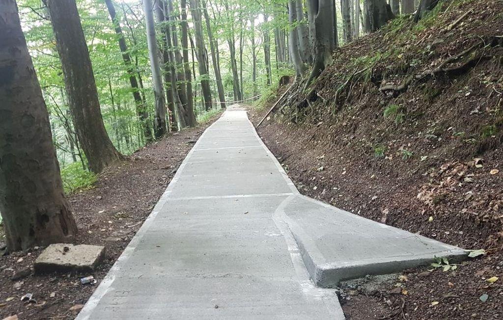 W lesie kładzione są betonowe płyty. Spłynęła fala krytyki