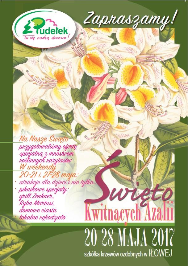 Święto Kwitnących Azalii